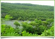 半屏湖濕地公園